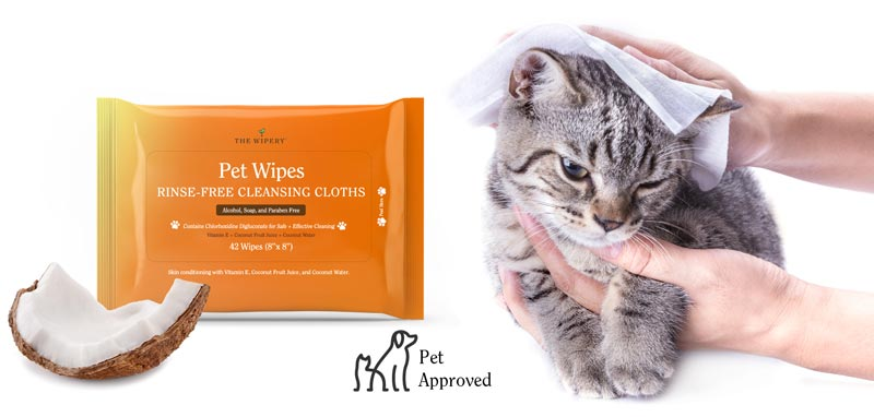 dog wipes cat wipes